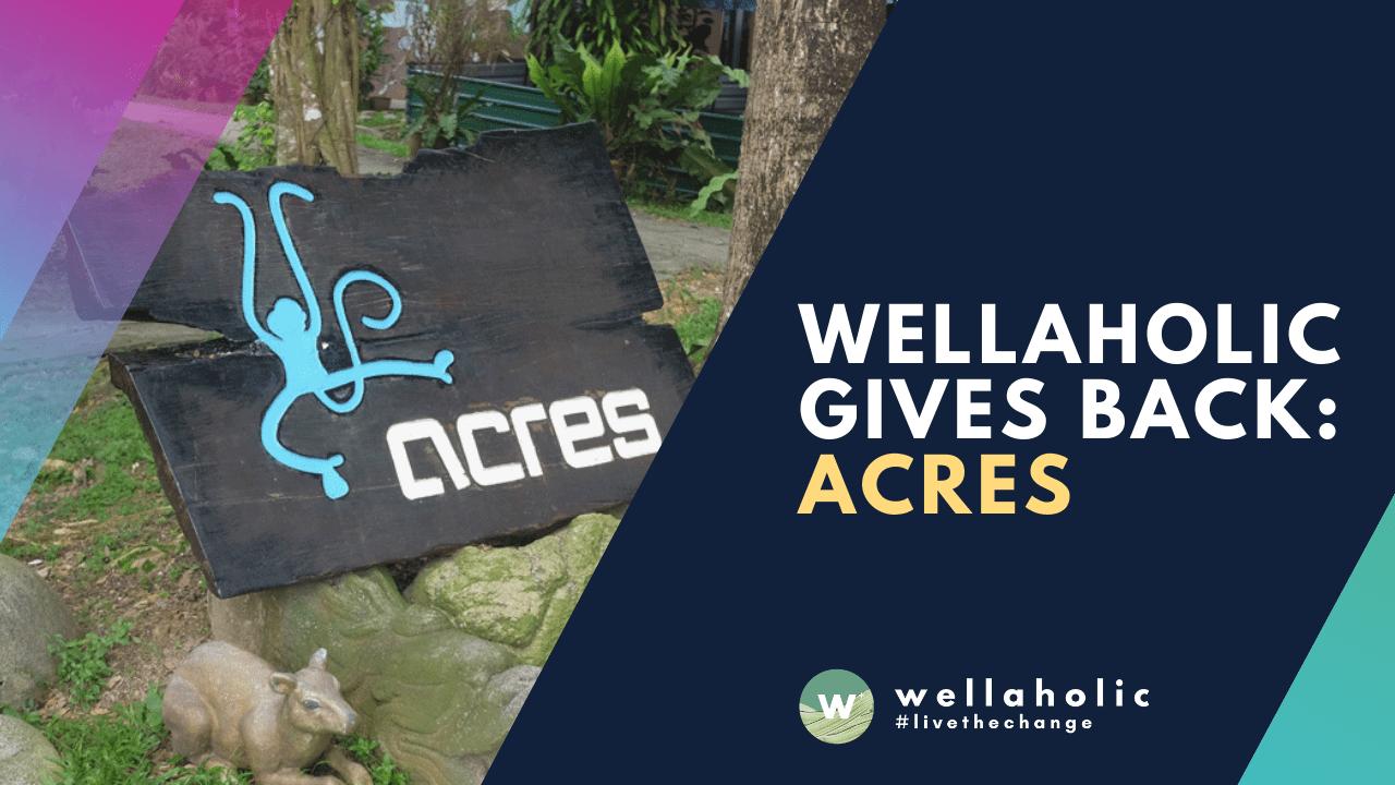 2021 Wellaholic Youtube & Website - ACRES